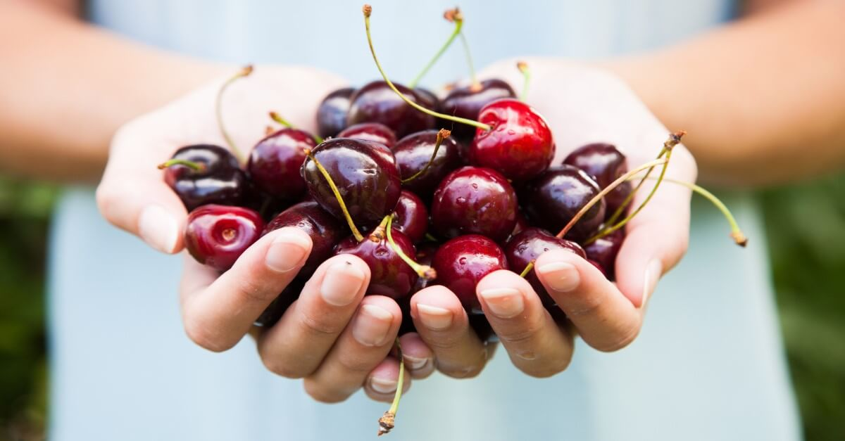 easy recipes with cherries