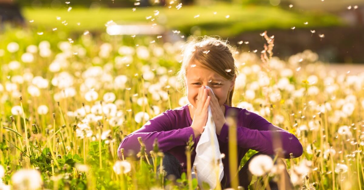 pollen allergy hay fever