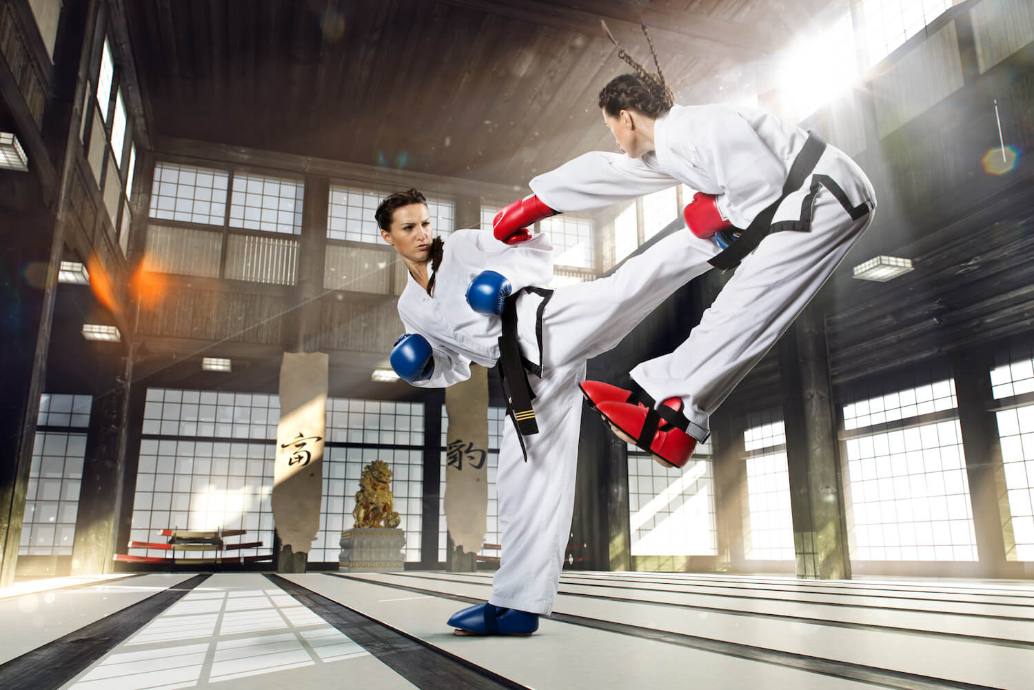 karate combat martial arts
