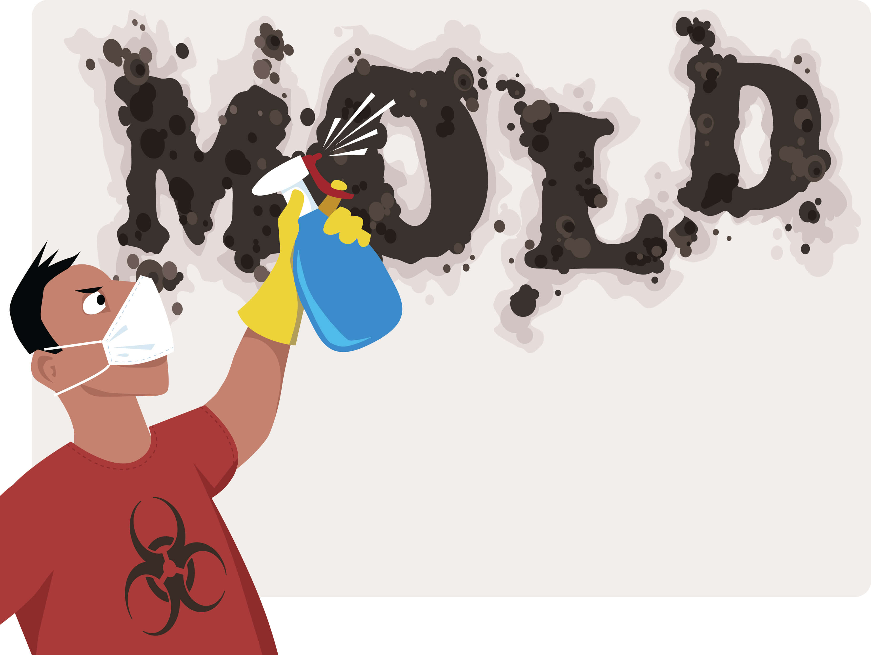 Things I can do against mold